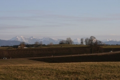 2012-03-10-0031