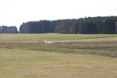 2012-03-17-0031