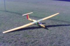 P05005