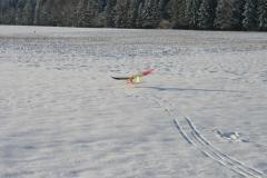 2010-12-04-0044